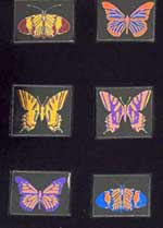 Technicolor Butterfly-6pk on 33COE