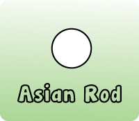 ASIAN CLEAR ROD